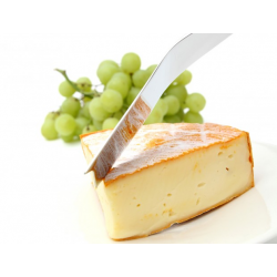 Nóż do sera - MAGISSO