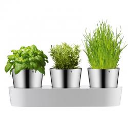Zestaw 3 doniczek na zioła, Gourmet - WMF