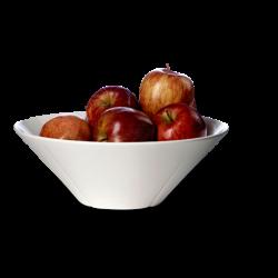 Misa porcelanowa 26 cm Grand Cru - Rosendahl